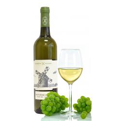 Mladé víno - Muškát Ottonel...